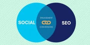 SEO and social media marketing for all level